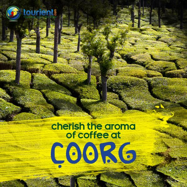 Tourist Places in Coorg: Not sure what is in there for Coorg Sightseeing? Below are the places you could visit during your Coorg Tour Package.  - Abbey Water Falls - Nagarhole National Park - Dubare Elephant camp (must visit with little adventure) - Omkareshwara Temple - Namdroling Monastery - Nisargadhama - Raja's seat (beautiful garden with viewpoint in Madikeri)  Contact now and book the best Coorg Holiday Package.