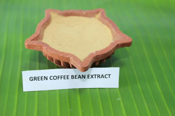 Indian green coffee bean extract is 100% natural and highly concentrated, which can promote metabolism.