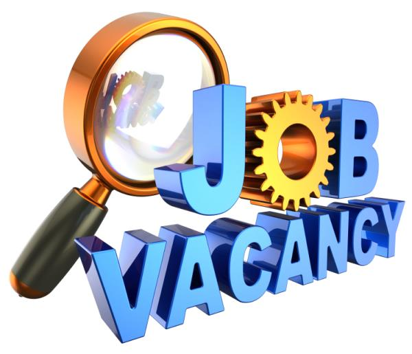 # Engg # IT # Auto # Pharma # Construction   Vacancy at Large   For Construction :- Engineering (Plumbers, Supervisors, Sr. Engg, Jr. Engg), Purchase, Accounts, Sales, Marketing, Stores, HR & Administration.   For IT :- JAVA Developer, Jira - by Ignite Employment Services, Pune