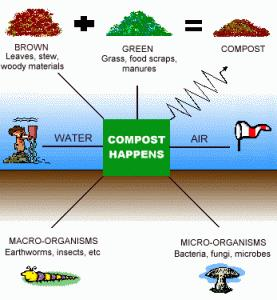 Introduction to Composting  The composting process is a complex interaction between the waste and the microorganisms within the waste. The microorganisms that carry out this process fall into three groups: bacteria, fungi, and actinomycetes. Actinomycetes are a form of fungi-like bacteria that break down organic matter.  The first stage of the biological activity is the consumption of easily available sugars by bacteria, which causes a fast rise in temperature. The second stage involves bacteria and actinomycetes that cause cellulose breakdown. The last stage is concerned with the breakdown of the tougher lignins by fungi.  Central solutions are exemplified by low-cost composting without forced aeration, and technologically more advanced systems with forced aeration and temperature feedback. Central composting plants are capable of handling more than 100, 000 tons of biodegradable waste per year, but typically the plant size is about 10, 000 to 30, 000 tons per year.  Biodegradable wastes must be separated prior to composting: Only pure foodwaste, garden waste, wood chips, and to some extent paper are suitable for producing good-quality compost.  The methodology of composting can be categorized into three major segments—anaerobic composting, aerobic composting, and vermicomposting. In anaerobic composting, the organic matter is decomposed in the absence of air. Organic matter may be collected in pits and covered with a thick layer of soil and left undisturbed six to eight months. The compost so formed may not be completely converted and may include aggregated masses.  Aerobic composting is the process by which organic wastes are converted into compost or manure in presence of air and can be of different types. The most common is the Heap Method, where organic matter needs to be divided into three different types and to be placed in a heap one over the other, covered by a thin layer of soil or dry leaves. This heap needs to be mixed every week, and it takes about three weeks for conversion to take place. The process is same in the Pit Method, but carried out specially constructed pits. Mixing has to be done every 15 days, and there is no fixed time in which the compost may be ready.  Berkley Method uses a labor-intensive technique and has precise requirements of the material to be composted. Easily biodegradable materials, such as grass, vegetable matter, etc., are mixed with animal matter in the ratio of 2:1. Compost is usually ready in 15 days.  Vermicomposting involves use of earthworms as natural and versatile bioreactors for the process of conversion. It is carried out in specially designed pits where earthworm culture also needs to be done. Vermicomposting is a precision-based option and requires overseeing of work by an expert. It is also a more expensive option (O& M costs especially are high).  However, unlike the above two options, it is a completely odorless process making it a preferred solution in residential areas. It also has an extremely high rate of conversion, so quality of the end product is very high with rich macro and micronutrients. The end product also has the advantage that it can be dried and stored safely for a longer period of time.  The composting plants consist of some or all of the following technical units: bag openers, magnetic and/or ballistic separators, screeners (sieves), shredders, mixing and homogenization equipment, turning equipment, irrigation systems, aeration systems, draining systems, bio-filters, scrubbers, control systems, and steering systems.  The composting process occurs when biodegradable waste is piled together with a structure allowing for oxygen diffusion and with a dry matter content suiting microbial growth. The temperature of the biomass increases due to the microbial activity and the insulation properties of the piled material. The temperature often reaches 65 degrees C to 75 degrees C within a few days and then declines slowly. This high temperature hastens the elimination of pathogens and weed seeds. Source:http://www.ecomena.org/composting/