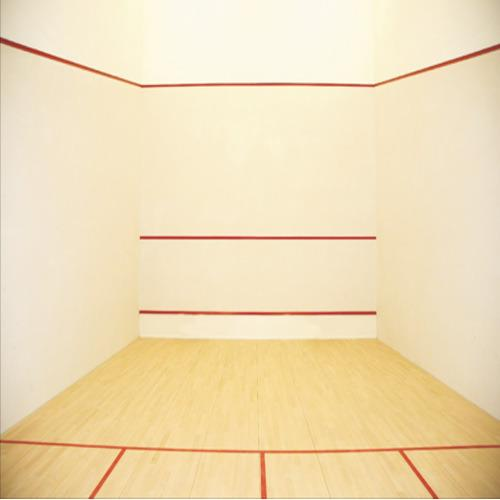 Hard Plaster System for Squash Court  We Sundek Sports Systems are manufacturers of Hard Plaster System for Squash Court in Mumbai.  As well as in India. Product Details: Color	Light Green Dimentions	9.75m L, 6.4m W and 5.64m H  Sundek Sports Systems provide with supply and application of Sunplast cement based Hard Plaster system confirming the requirement of WSF (World Squash Federation) consisting of a Base Coat and a Finish Coat of a total thickness of app.15 mm and coated with imported washable paint system. Due to the extremely hard nature of the plaster a slight uneven color distribution and micro porous surface checks may be seen once the plaster has dried. This does not affect the strength or the integrity of the plaster and is not to be considered as a defect. The dimensions of the court are 9750 X 6400 mm between plaster face: You will provide us with walls in proper plumb, level and at right angles. In order to bring the court to the required dimensions the walls should provide for a plaster thickness of app. 15 mm on each wall.