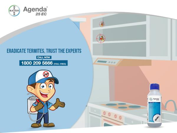 Did you know? Termites can infest kitchen cabinets even from a crack in the wall or come up from the flooring. Get rid of termites, call the #BayerExperts on 1800 209 5666 (Toll Free) or click here: http://bit.ly/25nr3qE
