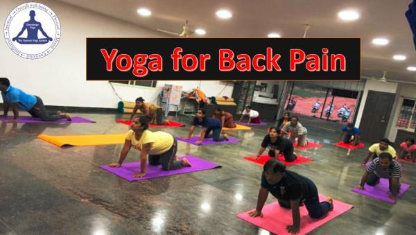 YOGA FOR BACKPAIN: (Tags: