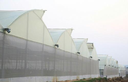 POLYHOUSE SHADE NET HOUSES  We supply world's best polyfilm  imported from Israel - Ginegar Poly Film. Our recent installation of 16000sqm of Ginegar Poly Film in Karnataka is one of kind where all 3 variants of polyfilm are used at single location. We also supply material for  Shade Net Houses . Call us for further information..