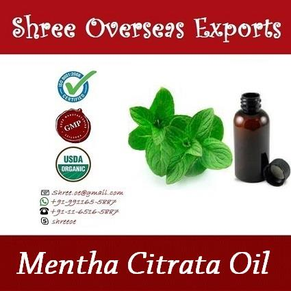 Organic Mentha Citrata Oil  Appearance : Thin Liquid Aroma          : Fresh, Sweet, Menthol-minty, Herbaceous Color             : Clear to pale yellow, sometime greenish  Uses: 1.	It is used as refreshing, mental, stimulant, energizing, used to enhance well-being of digestive and respiratory system. It is considered to be good nerve tonic that helps with mental fatigue and nervous stress. 2.	It is the ideal remedy for all digestive disorders, including nausea and vomiting. 3.	It is great remedy for car or air sickness 4.	In a massage, it helps in stimulating the lymph system. 5.	It is also an analgesic and aids with treating sore muscles and joint pain. 6.	It is an excellent headache remedy and relieves bad breath.   NO MOQ, Take as much you need