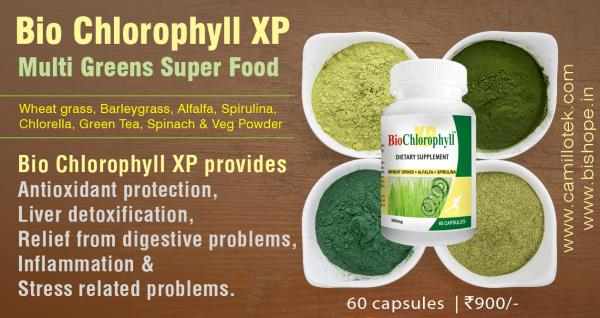 Bio Chlorophyll XP provides antioxidant protection, liver detoxification, relief from digestive problems, inflammation and stress related problems.  Buy green superfood capsules, Buy 7 greens capsules online, super greens tablets, Multi greens capsules, Green supplement tablets and Health supplement greens capsules.  Green superfood capsules manufacturers,  green superfood capsules suppliers,  green superfood capsules exporters wholesalers, traders in chennai, India.