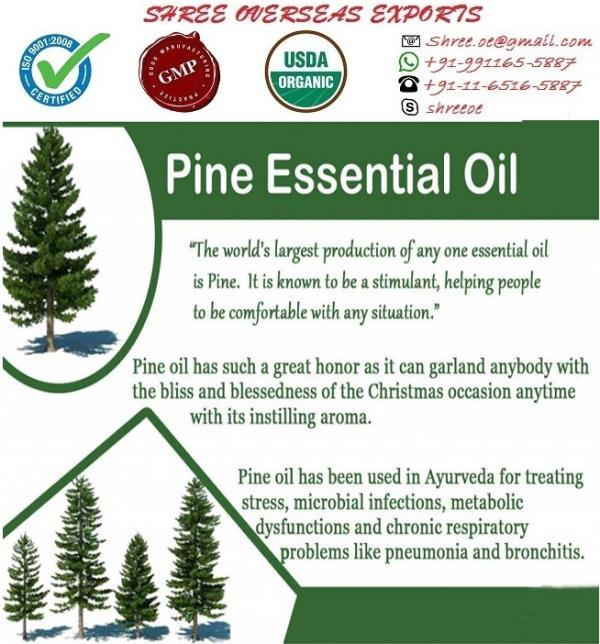 Pine Oil Pinus Sylvestris Pine Oil, also known as the Pine Tar, it isd extracted by steam distillation of wood, leaves and twigs of Pine tree Appearance : Transparent Liquid Aroma : Frsh, Sweet-resinous, Woody, Turpentine, Coniferous, Balasmic Color : Light Yellow Chemical Constituents : Pine oil has various chemical compounds that include borneol, bornyl acetate, phallandrene, pinene, carene USES: 1.	It is an paowerful antiseptic doe respiratory tract, balsamic rubefacient(rheumatic complains), influenza and all infections of respiratory tract. 2.	Pine Oil is most useful to relieve mental and sexual fatigue, while having a cleansing and invigorating effect on an area and is great for vapour therapy in a sick room as it promotes healing. 3.	It can be used for cuts and sores, scabies and lice and for excessive perspiration. 4.	It has also been applied to eczema those with laryngitis, muscular aches, neuralgia, ringworm, scrapes and sinusitis. 5.	It is also used in perfumery, soaps, shampoos, air fresheners, deodorants and various types of creams. 6.	It is also can be used in pesticide for livestock.  NO MOQ, Take as much you need