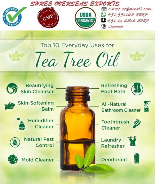 Organic Tea Tree Oil Melaleuca Alternifolia Appearance : Thin Liquid  Aroma : Medicinal, fresh, woody, earthy, herbaceous   Color : Pale yellow to colorless   Chemical constituents: Tea tree oil has various chemical compounds that include Terpinen-4-ol, Alpha-Terpineol, Cineole, Pinene, Alpha Terpenene, Beta-Caryophyllene.   Extraction: The tea tree oil is extracted by the steam distillation of leaves.  USES:  1. This is the best oil to fight viruses, bacteria and fungi. Wounds and scrapes can be washed out with a mixture to disinfect the area.  2. It is used in vapor therapy and can help with colds, measles, sinusitis and viral infections.  3. Tea tree oil has been used for skin and hair and to combat acne, oily skin, head lice and dandruff.  4. It is useful in case of burns if applied immediately by washing area with ice water, then applying drops of tea tree oil to burned area helps to produce soothing and healing effect to the skin. It is helpful in the case of calluses and corns.  5. Tea tree oil is being used in number of applications like all purpose cleaner, deodorizer, bedsores, dishwashers, humidifiers, plant sprays, vaporizers etc.  NO MOQ Take as much you need