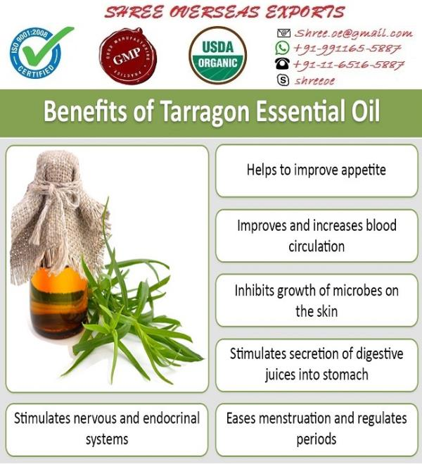 Tarragon Essential Oil Or