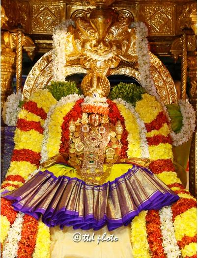 Tirupati package from chennai  Chennai to Tirupati Tour Operators  Daily trips to Tirupati with Rs300 special entry online darshan ticket  Contact 7299022422 , 7299449999 , 7299922422  Email : viswambaratravels@gmail.com  WhatsApp Number : 7299922422  For more information  visit:- http://www.tirupatibalajidarshanonline.in/  Tiruchanoor, 14 November 2017: Laksha Kumkumarchana' was performed on a grand note at Sri Padmavathi Devi temple in Tiruchanur on Tuesday.The ritual is performed before the commencement of mega religious event of nine day 'Kartheeka Brahmotsavams' which is set to commence from Wednesday onwards.  The ritual began at 8 a.m. and concluded at 12 noon at the Mukha Mandapam located opposite Sri Krishna Swamy temple , where the processional deity of goddess Padmavathi was seated on 'asan'. The priests chanted the 1000 divine names of Goddess for ten times during this fete.