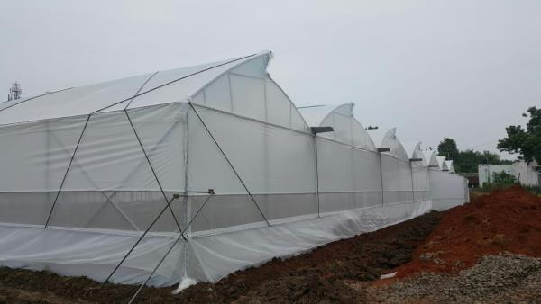 GREEN HOUSE MANUFACTURERS We supply GINEGAR POLYFILM for polyhouse construction.  We offer premium quality GREEN HOUSE ACCESSORIES for polyhouse construction.  Visit us to check our pricing offers..