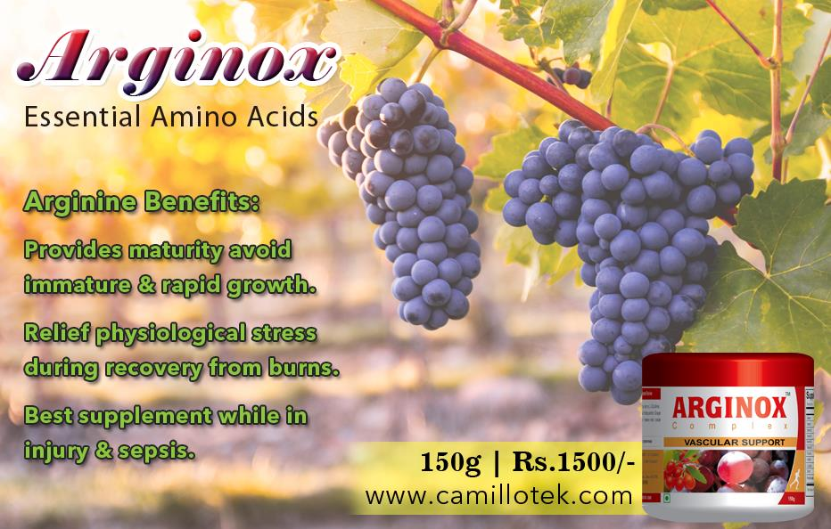 Immature and rapidly growing individuals require arginine in their diet must. And who are in physiological stress, during recovery from burns, injury and sepsis. Grape seed powder online, L-arginine powder online, grape seed extract for heart, cardiovascular support supplement, grape seed for weight loss, supplement for health blood vessels, L-arginine powder benefits and grape seed for metabolic balance. L-Arginine powder manufacturers, L-Arginine powder suppliers, L-Arginine powder exporters wholesalers, traders in Chennai, India.