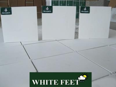 WHITE FEET - floor tiles, roof tiles, roofing tiles , cool roof tiles, weather proof tiles , solar reflective tiles, Heat Resistent Tiles , Heat Reflective Tiles , White tile , White Roof Tiles, Concrete Tiles , Non Ceramic Tiles, Manufacturer in chennai ,