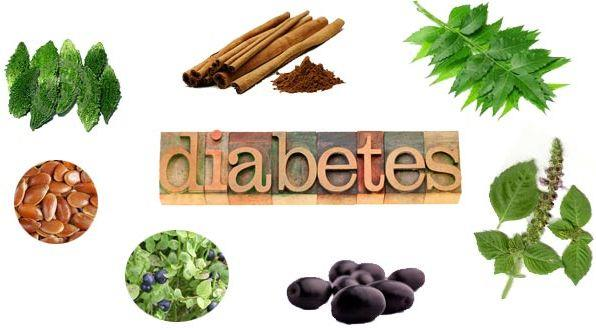 Diabetes is a disease, which slowly damages almost every vital organ of our body. It is extremely essential to gain complete control over it.Commonly it is believed that impaired insulin secretion is the only disorder in diabetes & controlling blood sugar levels is the only treatment of Diabetes, unfortunately that's not all.Ayurveda, the ancient Indian System of medicine has described this problem with minute details covering many other aspects that must be treated along with increased blood sugar. with a treatment that covers each and every aspect of this disease.  At Ayushree Ayurvedic Hospital & Research Center we have done extensive research on Diabetes. Based on this research, we have developed a model line of treatment involving specially designed combination of selective herbs, Panchakarma, Diet programme and Rasayana Therapy. With our Treatment Programme of Diabetes which it is possible to:  a)Achieve natural control over Blood Sugar levels b)Prevent Complications of Diabetes Mellitus c)Maintain high levels of Immunity in order to prevent recurrent infections, illnesses etc. d)Lead a normal healthy life free of restrictions