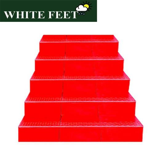WHITE FEET - designer tiles in chennai, designer tiles price, step tiles in chennai, step tiles price in chennai , chequered tiles in chennai, pavement tiles in chennai , Tiles price in chennai, Tiles designs in chennai, Tiles Rate in chennai