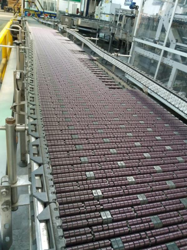 Bottle conveyor for beverage industry