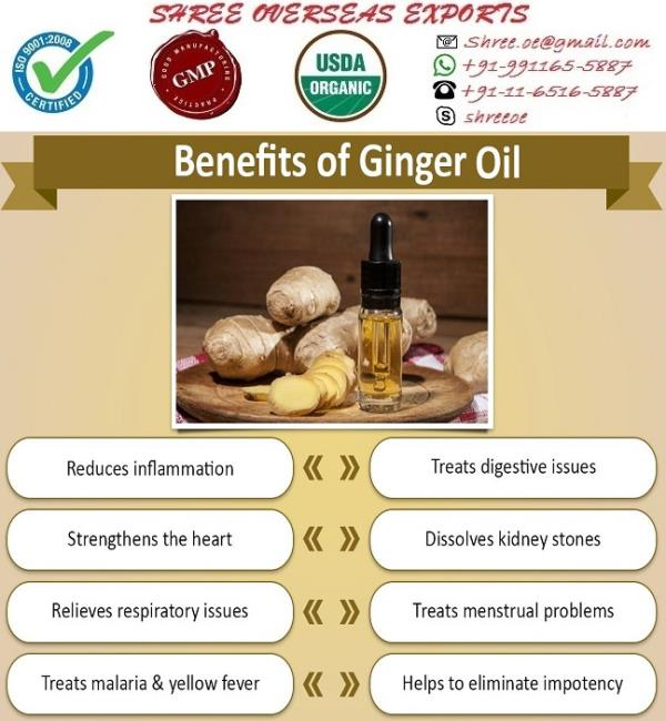 Best Ginger Oil Exporter in Uk (United Kingdom)  Zingiber officinale  This oil is extracted from Zingiberaceae officinale plant of the Zingiberaceae family. it is also known as  Jamaica or common Ginger.   Ginger Oil Origin : This plant is originated in India, China and Java, yet is also native to Africa and the West Indies. It was most likely brought to Europe in  between the 10th and 15th century as a spice.  Properties of Ginger Oil : Ginger oil can vary in color from pale yellow to a darker amber color and the viscosity also ranges from medium to watery. It is very strong smelling oil - spicy, sharp, warm and with a hint of lemon and pepper, which smells of actual ginger.  Appearance: Thin liquid  Aroma : : spicy, Warm and Stimulating  Color : Light yellow  Extraction: It is extrtacted by the steam distillation from unpeeled or dried, ground-up root (rhizome) of plants.  Chemical constituents: Borneol, β-Bisabolene, Camphene, 1, 8-Cineole, Geraniol, Geranial, Geranyl Acetate, Linalool, Nerol, Neral, α& β -Pinenes, ϒ-Terpineol and   Zingiberene.  Mixes well with: Bergamot, Cedarwood, Coriander, Clary Sage, Clove, Cypress, Frankincense, Lime, Orange, Neroli, Patchouli, Rosewood, Rose, Sandalwood and Vetiver oils.  Uses:  1. Ginger is warming, stimulating and grounding. It aids memory and is an aphrodisiac and also helps with pain relief and detoxification.  2.  Ginger oil is used in the treatment of fractures, rheumatism, arthritis, bruising, carbuncles, diarrhea, colic, cramps, nausea, hangovers, travel and sea sickness, colds and flu, sores on the skin, sore throat, catarrh, congestion, coughs, sinusitis, chills and fever.  3.  Ginger tea has been recommended to alleviate nausea in chemotherapy patients primarily because its natural properties do not interact in a negative way with other medications.   4.  In cosmetics and essence, it is helpful in skin care as well increase fragrance, essential oils are highly versatile and can be used in a variety of ways such as room fragrances, bath oils, massage oils, perfumes, inhalations, natural preservatives and in cosmetic preparations.  For More visit https://shreeoe.trustpass.alibaba.com/product/50037399876-103815643/Organic_Ginger_Oil.html?spm=a2700.8304367.prewdfa4cf.1.44104e71Olk9sv