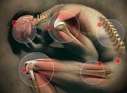 ayurvedic rheumatology treatment in gurgaon ayurvedic skin allergy treatment in gurgaon ayurvedic spondylitis treatment in gurgaon