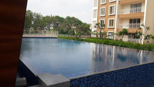 Swimming Pool and Fountain Contractors in Bangalore . We undertake design and construction of swimming pools, fountains and water bodies across all south Indian locations.  Infinity Swimming pool created by Team Water Works for Sattva Celesta Project @ Bangalore