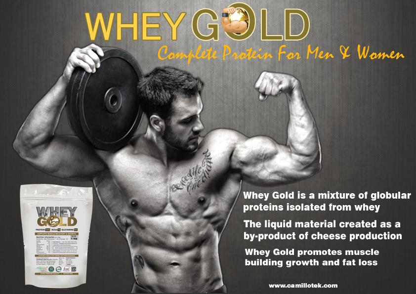 Whey Gold is the mixture of globular proteins isolated from whey. Whey Gold promotes muscle growth and weight loss. Isolated whey manufacturers, Isolated whey suppliers, Isolated whey exporters, wholesalers, traders in Chennai, India.
