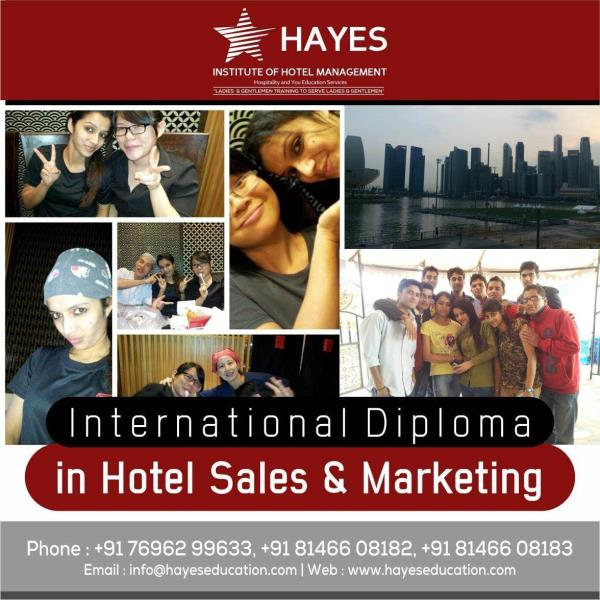 Are you  still thinking what to do after your graduation  or Degree , Hayes IHM offers International diploma in hotel sales & Marketing which can get you straight to your career with the largest industry of the world AND in the best of the environment. Join one year Diploma course and get your career on path . For details contact us on 7696111955   Hurry!  To buy visit -http://www.hayeseducation.com/  #internationaldiploma #hotelmanagement #salesmarketing #Chandigarh #courses #MBA