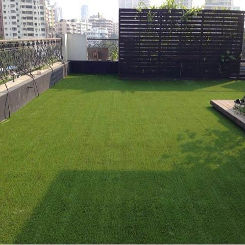 Artificial Grass   Sundek Sports Systems is Supplier of Artificial Grass in Mumbai.  Product Details: Coverage Area (square meters)- Customized Material- Synthetic Shape - Straight Sundek Sports System offers Artificial Grass (SunTurf). SunTurf is the closest look -alike to natural grass, and has all the third party international specifications and ratings with respect to Fire, Safety and Environment. Draincell, being an optional item, would be required if you preferred the surface water to quickly drain out from the surface, especially after a heavy monsoon shower. It has a 20mm thickness. The base surface will have to uniform and hard. It cannot be installed over an existing grass surface as that would make the SunTurf (Artificial Grass) dimensionally unstable and , due to the uneven nature of the base, the joints would also show. Hence the important requirement of a level base surface. Maintenance of the SunTurf (Artificial Grass) is absolutely minimal and very basic. It can be broomed/hoovered and even washed with a water hose regularly, to keep it clean. The surface fibre will never come off in normal use. Other Details: Helps to create a Green and Vibrant lawn all year around Cost effective and affordable Commercial grade materials used Environmentally friendly UV stabilized, designed for outdoor use Enhance Property value Long lasting investment, 8-10 years lifespan