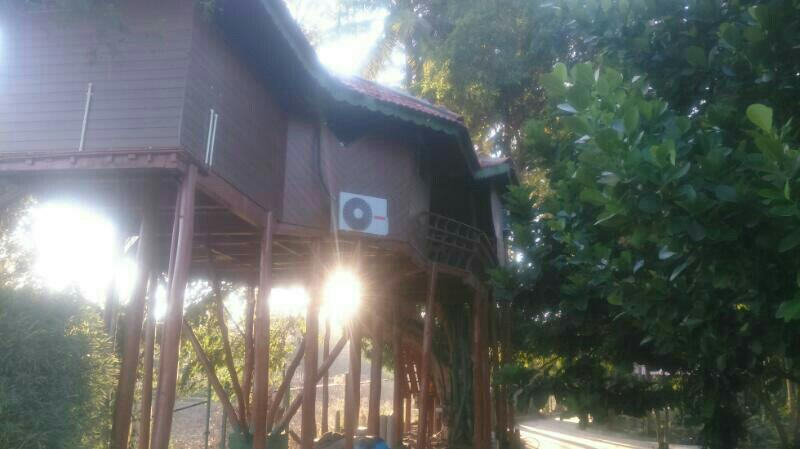 Coorg tree house is