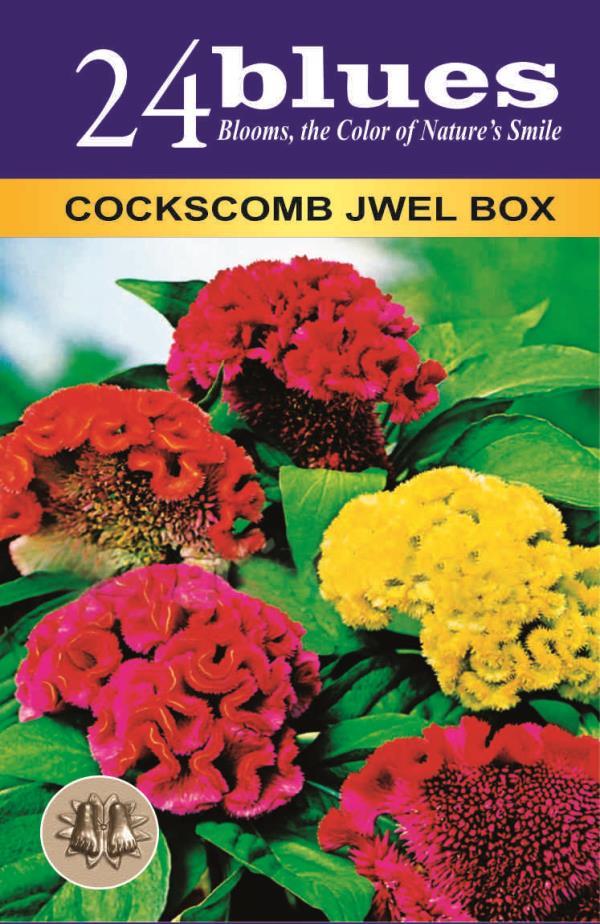 COCKCOMBS Seed Suppl