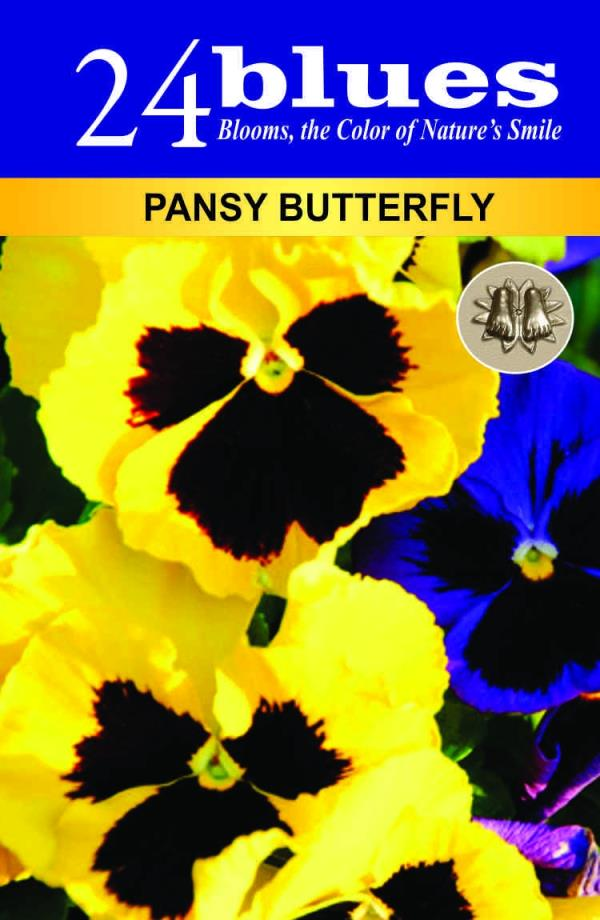 Pansy Seeds Supplier