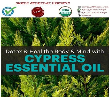 Best Quality Cypress Oil'