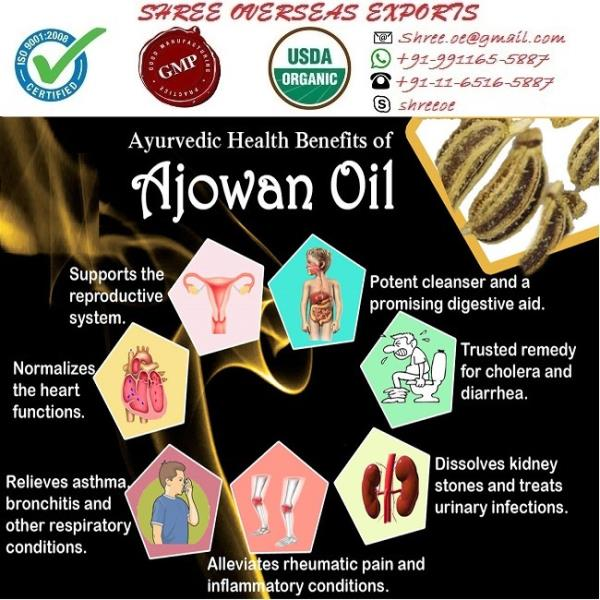 Exporter and Manufacturer of Ajowan oil in Kent, United Kingdom | Shree Overseas Exports Ajowan essential oil is antibacterial, anti fungal, antiseptic, antiviral, an anaphrodisiac, antispasmodic, anti microbial, a carminative, parasiticide, analgesic, and a tonic. this Ajowan oil is exported by Shree Overseas Exports in Kent, United Kingdom. With No MOQ(Minimum Order quantity) requirement. Private labeling and sample are also available.