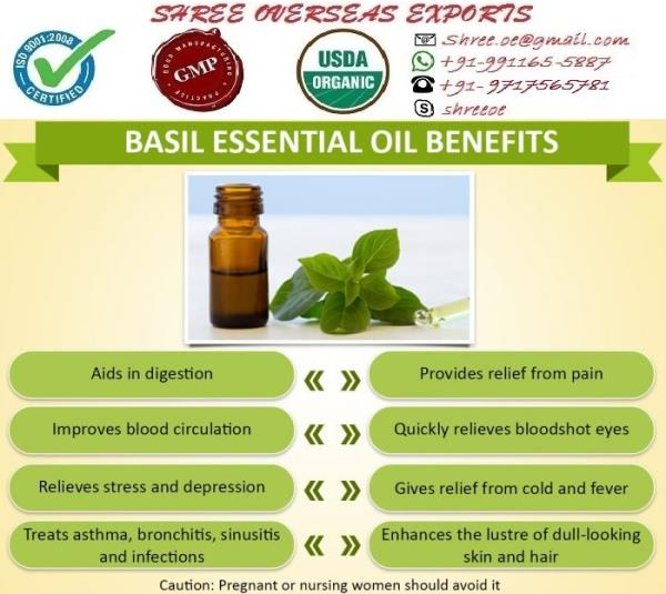 Best quality Basil oil is