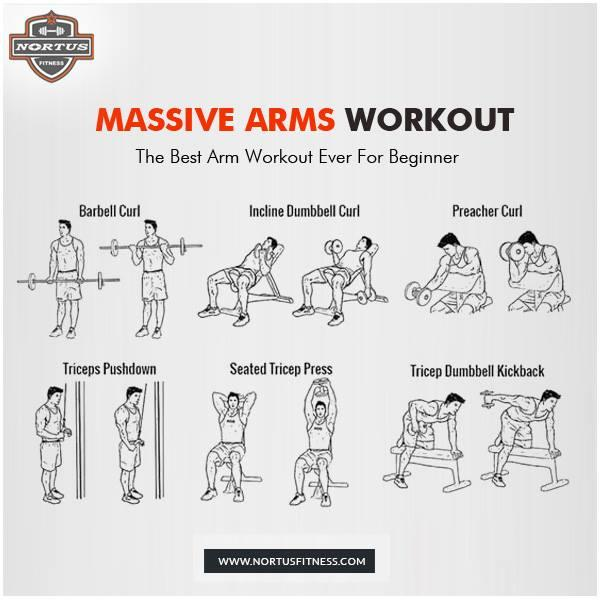 GymExerciseTip Best Arms