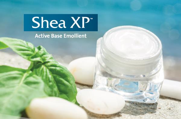 Introducing Shea XP : An Activ