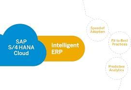 Intelligent ERP with SAP