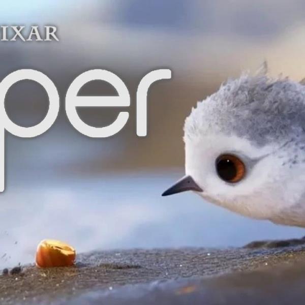 Piper curta da Pixar ganh