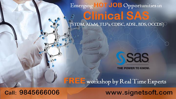 Clinical SAS Training in