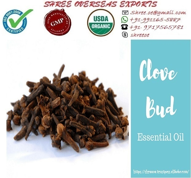 Clove Bud Oil's Exporter and Manufacturer in Bermingham, United Kingdom | Shree Overseas Exports Clove bud oil is extracted by steam distillation method from Clove bud. Botanical name of Clove bud is Syzygium Aromaticum. Appearance of Clove bud oil is clear liquid. Color is light golden yellow. Clove bud oil have various chemical compound like Eugenol, eugenyl acetate and caryophyllene. Shree Overseas Exports is exporting and Manufacturing best quality Clove bud oil in Bermingham, United Kingdom.