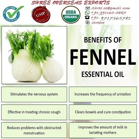 Fennel seed oil's Exporte