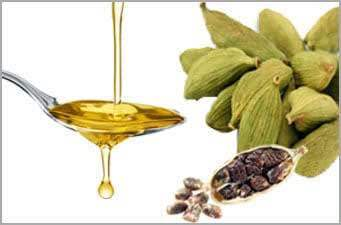 Cardamom oil supplier  Cardamo