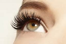 Eyelash Extension Service Eyel