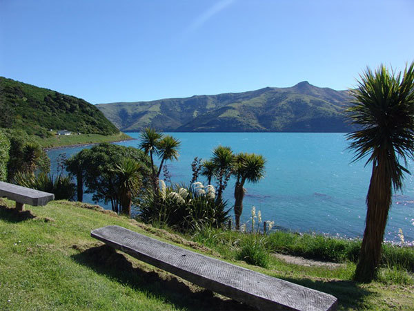 Season in New Zealand are same