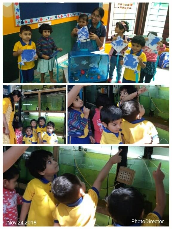 Best Kindergarten in Indiranag