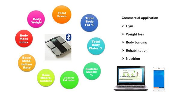 BMI Machine With Print OutBODY COMPOSITION ANALYSER ON RENT IN DELHIHeight Weight BMI Machine Price IN LUCKNOWProfessional Body Composition Analyser ON RENT IN GHAZIABADBMI Machine On Rent IN JAIPURBCA MACHINE Manufacturer IN CHANDIGARHBMI Machine IN GURUGRAMBCA MACHINE SUPPLIER IN JALANDHARBMI Machine Cost IN NOIDAPortable Body Composition Analyzer IN AGRAComposition Analyzer Price IN JAMMUProfessional Body Composition Analyzer IN BHOPALBody Composition Analyzer IN ALLAHABADSALE BODY FAT ANALYZER IN VARANASIHeight And Weight Machine IN DEHRADUNBCA MACHINE Manufacturer IN NEW DELHIBMI Machine For Gym IN AMRITSARBCA MACHINE SUPPLIER IN LUDHIANABest BMI Machine IN AJMER