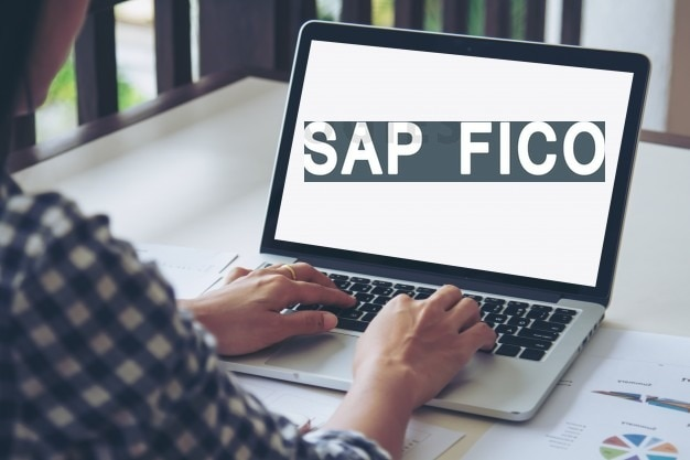 Are you looking for Sap fico t